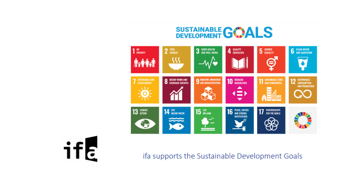 Culture in the Sustainable Development Goals: The Role of the European Union