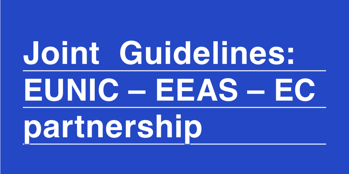 EEAS & EUNIC EU National Institutes for culture
